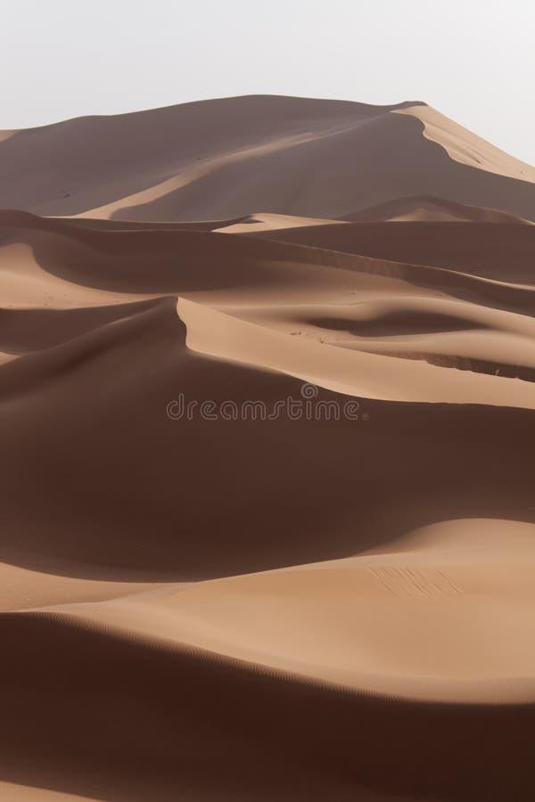 Dunes de Marocain Sahara photo stock