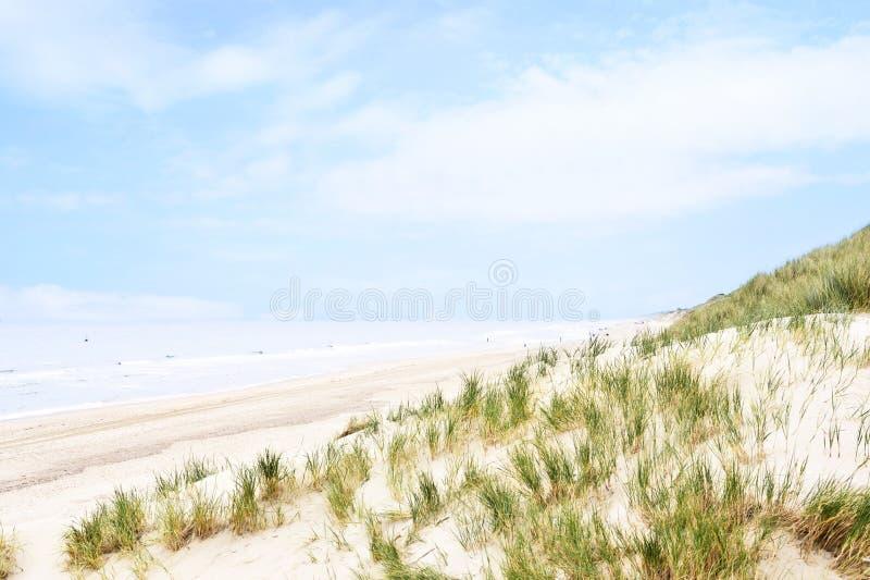 Dunes de plage au soleil images libres de droits