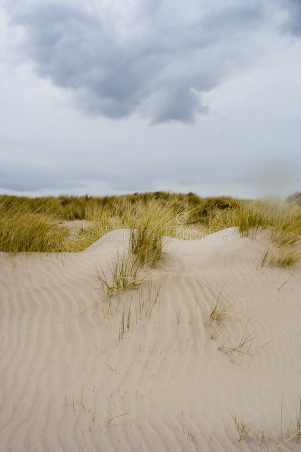 Dunes de sable 1 photo stock