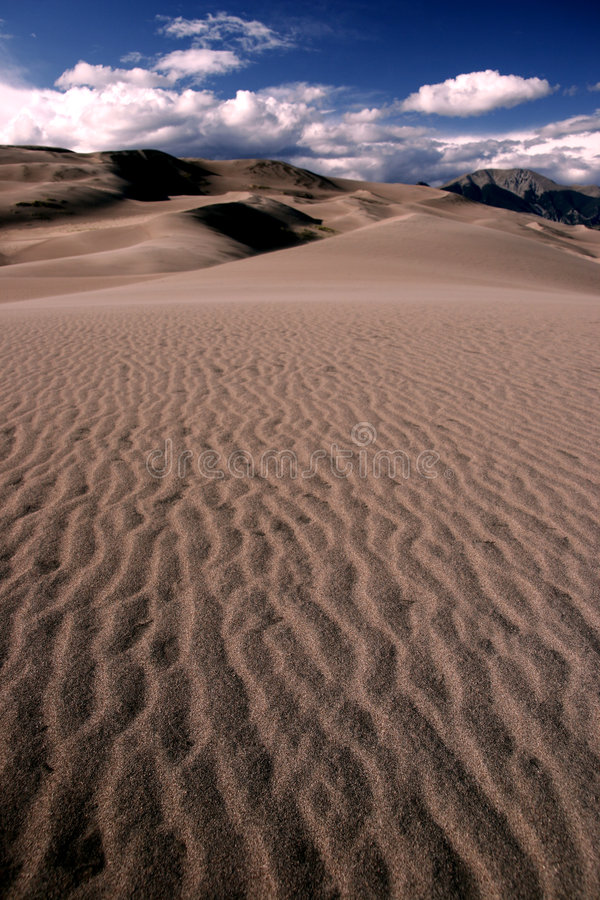 Dunes de sable photographie stock libre de droits