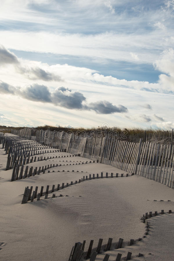 Dunes de sable balayées par le vent, Hampton New York est photo libre de droits