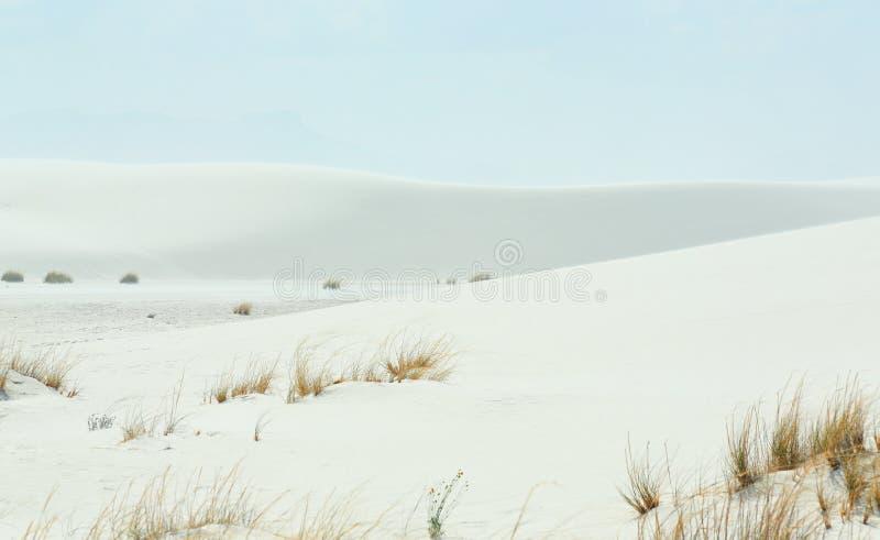 Dunes de sable blanches avec les ondulations formées par vent images stock