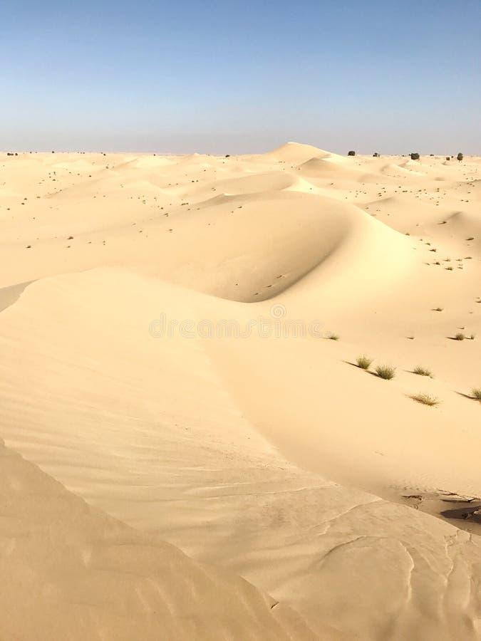 Dunes de sable blanches images libres de droits