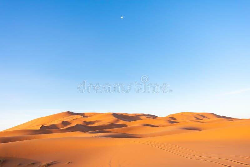 Dunes de sable dans Sahara Desert pendant le matin avec la lune dans le ciel photo stock