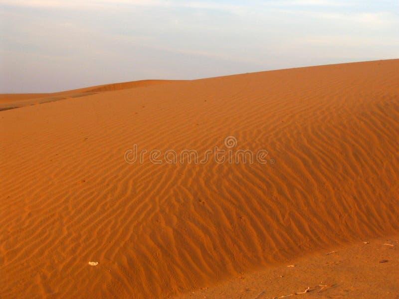 Dunes de sable de désert image stock