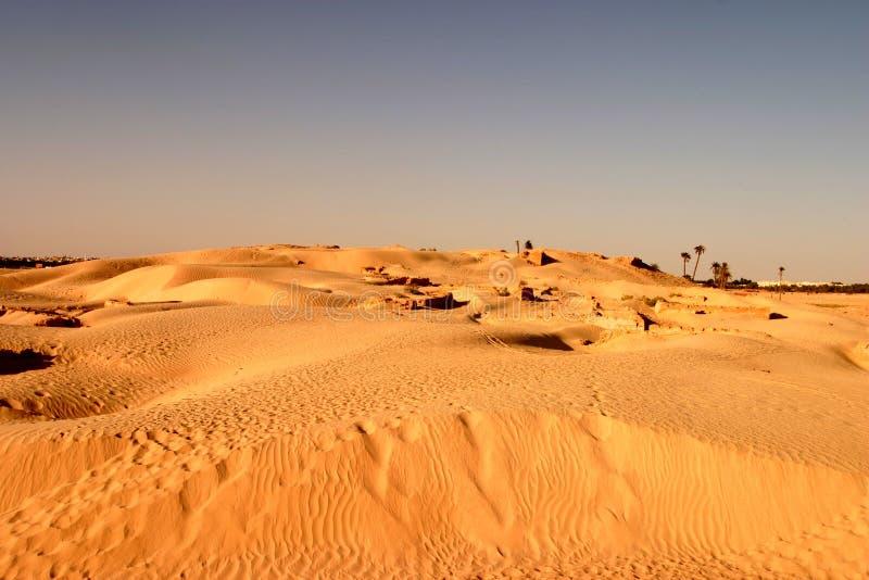 Dunes de sable de désert du Sahara photos libres de droits