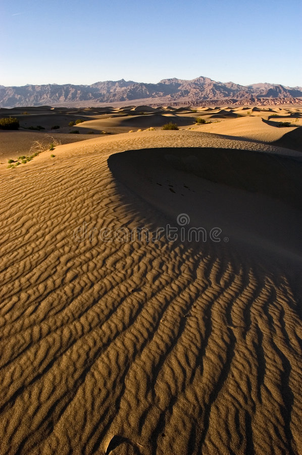 Dunes de sable de la Californie photos stock