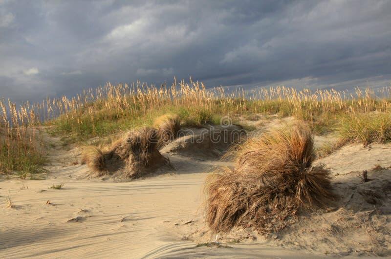 Dunes de sable de tempête et avoine de mer, côtés extérieurs photographie stock libre de droits
