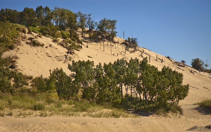 Dunes de sable de Warren image libre de droits