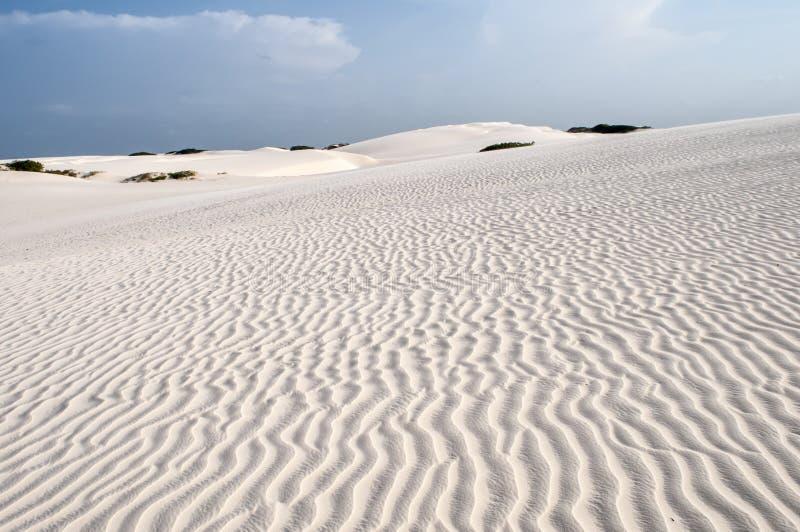 Dunes de sable du Lencois Maranheses au Brésil image libre de droits