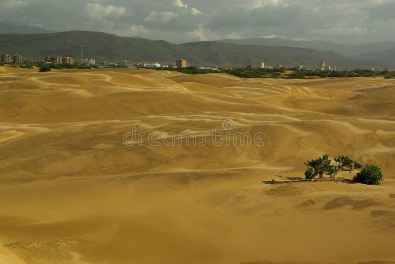 Dunes de sable et la ville de Coro au Venezuela photos libres de droits