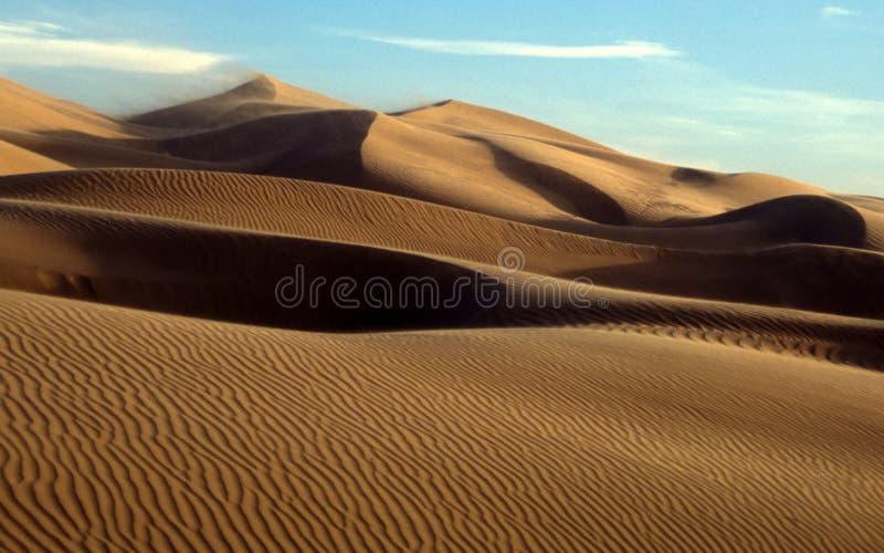 Dunes de sable mexicaines de désert photo libre de droits