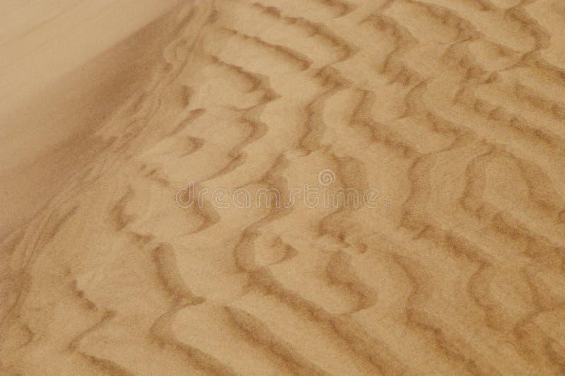 Dunes de sable ondulées photographie stock libre de droits