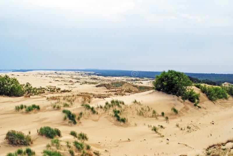 Dunes de sable sur la broche de Curonian photos libres de droits