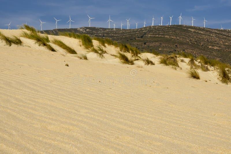 Dunes de sable sur la plage dans la perspective des montagnes goudron photo libre de droits