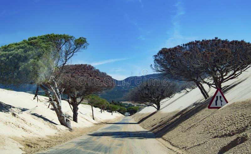 Dunes de sable Tarifa Cadix image stock