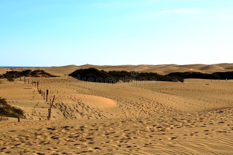 Dunes de Sandy en plage naturelle c?l?bre de Maspalomas Gran Canaria l'espagne photos stock
