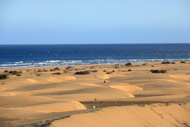 Dunes de Sandy en plage naturelle c?l?bre de Maspalomas Gran Canaria l'espagne photo stock