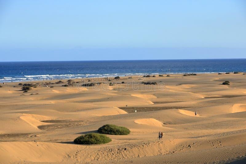 Dunes de Sandy en plage naturelle c?l?bre de Maspalomas Gran Canaria l'espagne image stock