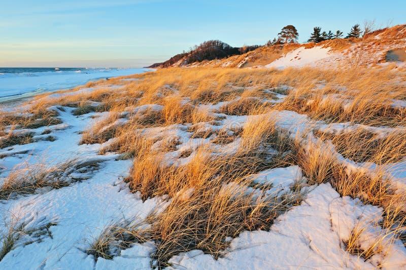 Dunes de Saugautuck, lac Michigan images stock