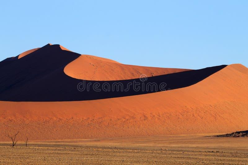 Dunes de Sossusvlei images libres de droits