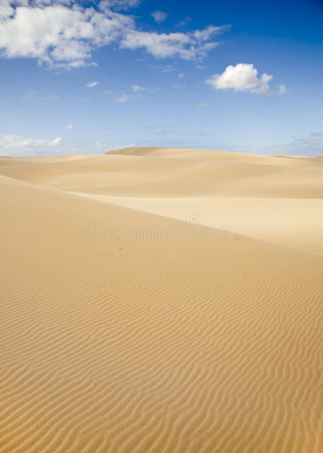 Dunes de Stockton photographie stock