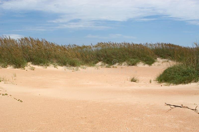 Dunes de surveillance de cap   photographie stock
