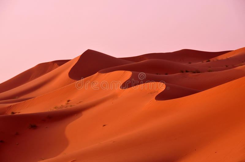 Dunes in the desert of Morocco royalty free stock photo