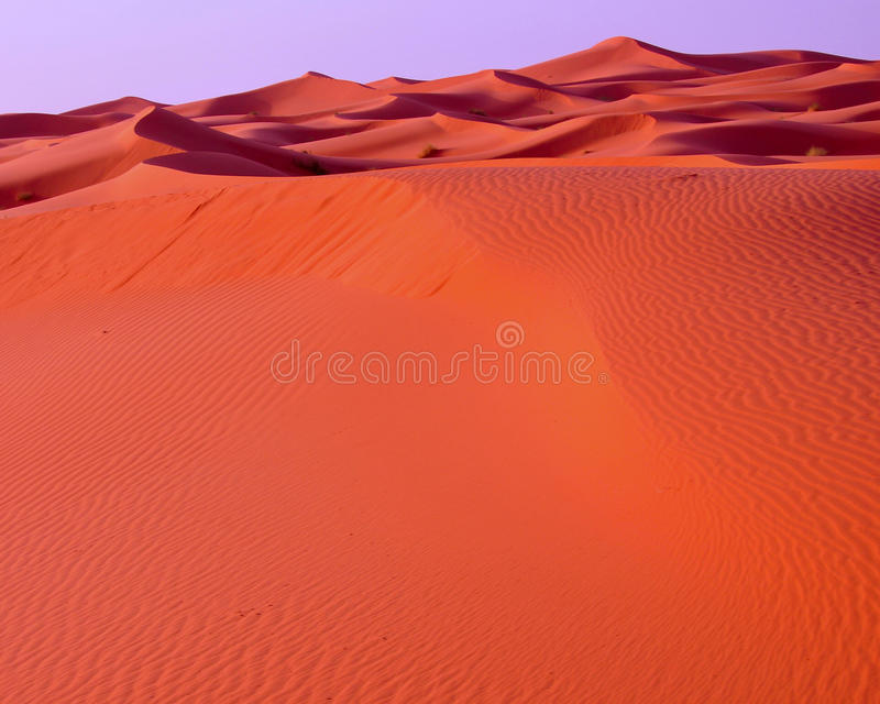 Dunes In The Desert Of Morocco Royalty Free Stock Photos