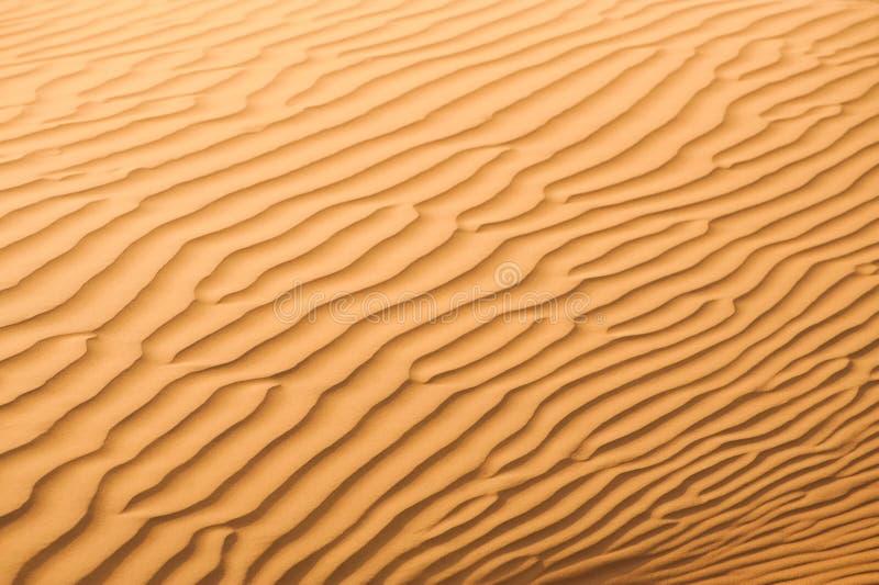 Dunes in Dubai desert royalty free stock images
