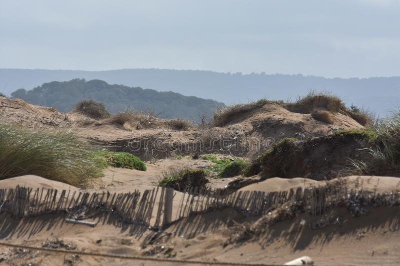 Dunes. Of the north coast of Menorca beach sand nature landscape outdoor nopeople stock photography
