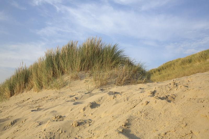 Dunes, The Netherlands stock images