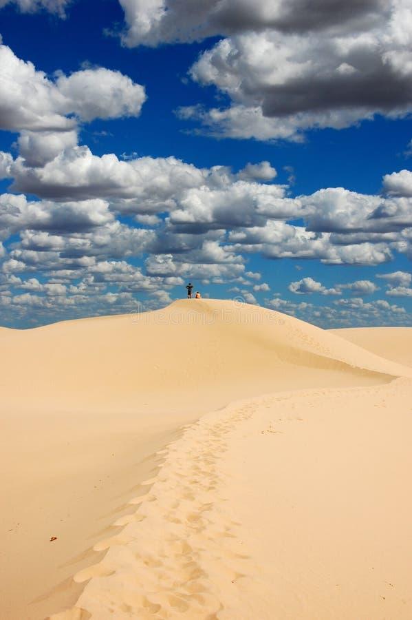 Dunes en Mungo National Park, Australie images libres de droits