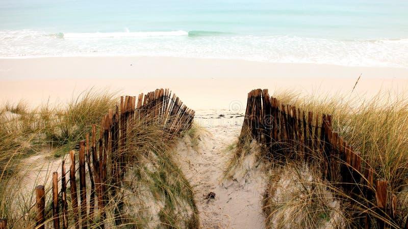Dunes et océan images libres de droits
