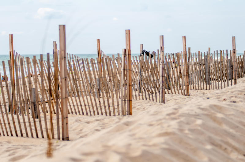Dunes fencing along outer banks of north carolina in cape hatter royalty free stock photos