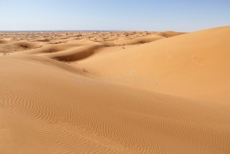Dunes II royalty free stock photography