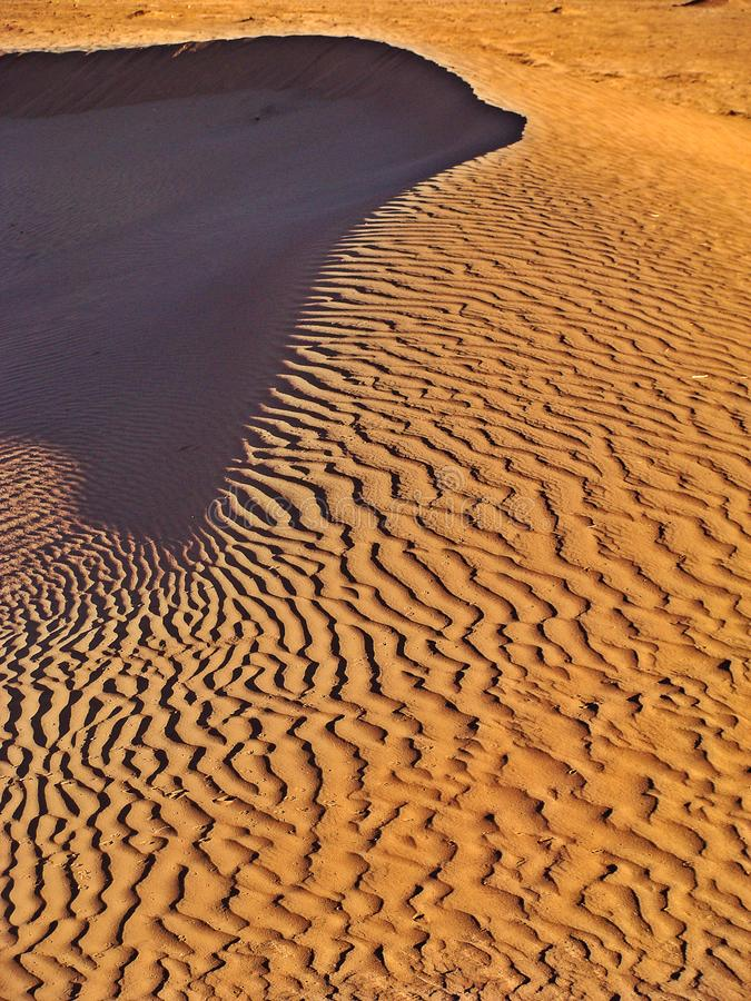 Dunes in the moroccan sahara desert. M`Hamid is a town that is in the Zagora region, in the center of Morocco, and is recognized as one of the places where the stock photo