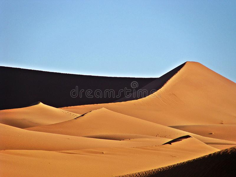 Dunes in the moroccan sahara desert. M`Hamid is a town that is in the Zagora region, in the center of Morocco, and is recognized as one of the places where the royalty free stock photo