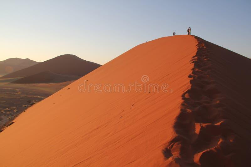 Dunes in Namibia desert Africa