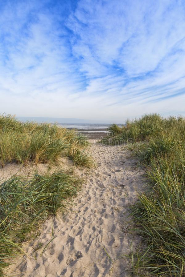 Dunes at North Sea beach stock photography