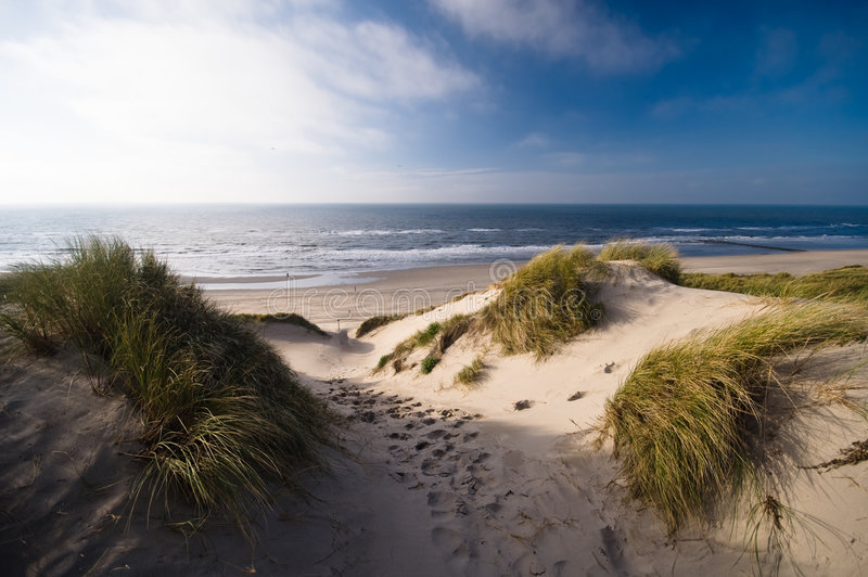 Dunes and ocean stock photography