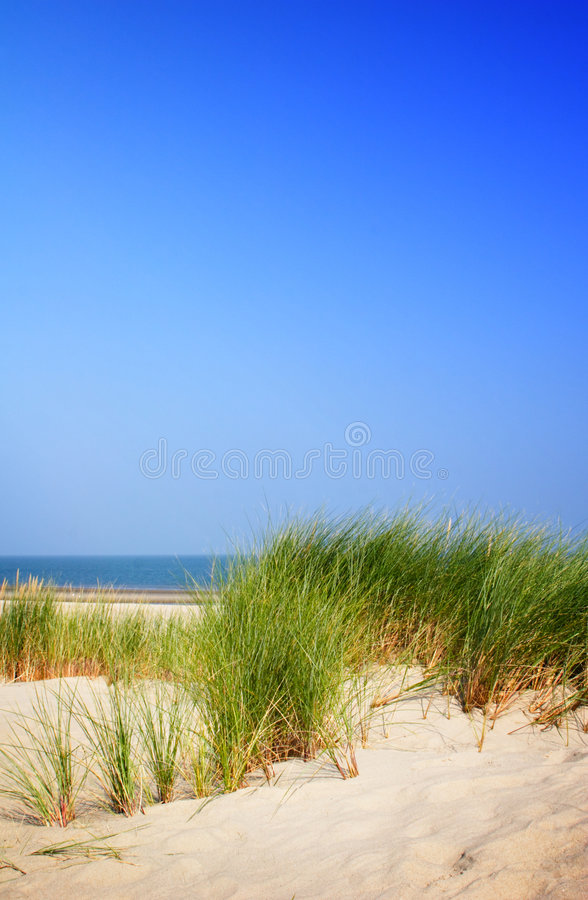 Dunes and Ocean View stock photography