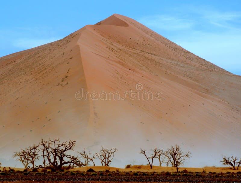 Dunes poussiéreuses namibiennes photos stock