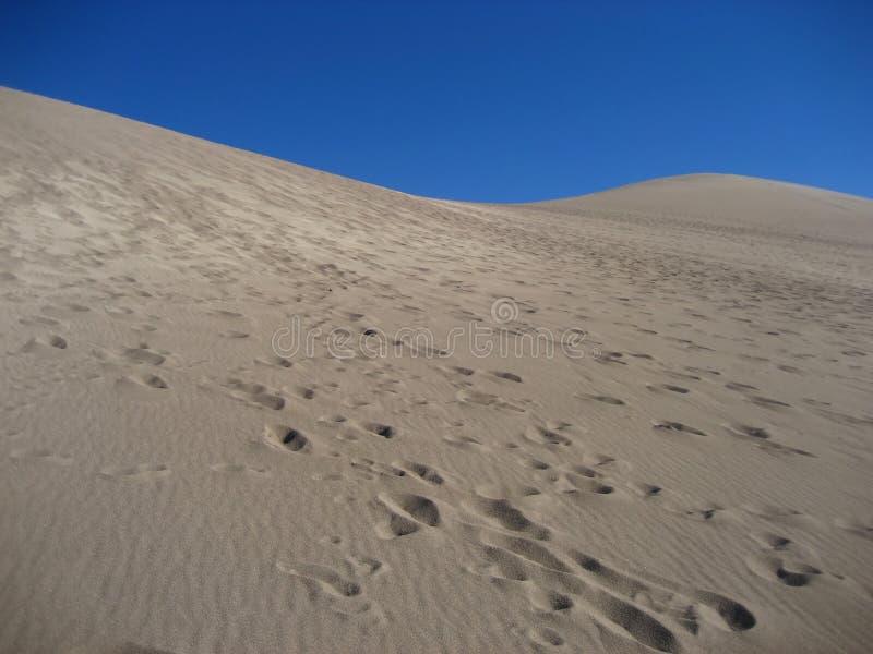 dunes sand стоковые изображения