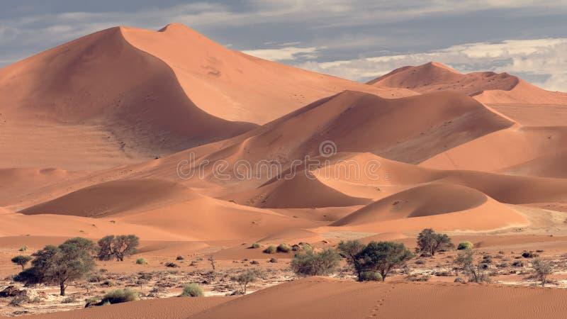 Big Mamma Dune, Sossusvlei, Namibia stock images