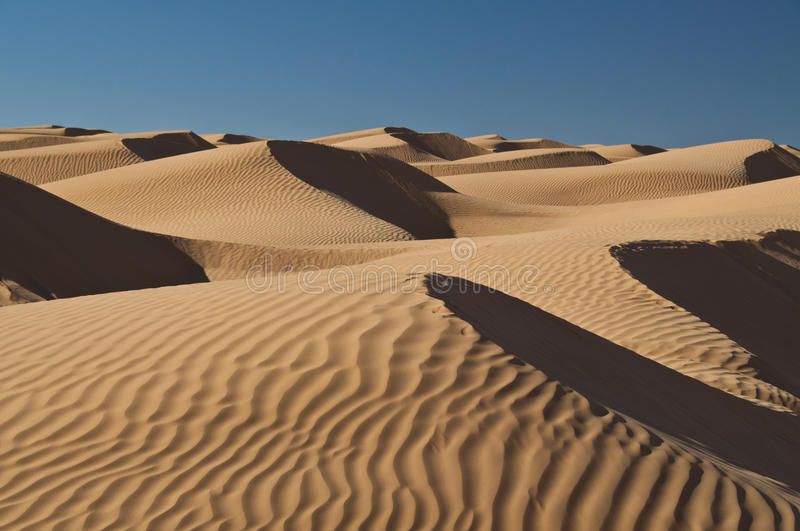 Dunes, sand, Sahara, desert. Sand dunes in the Sahara desert, light, shadows, curves, wind and sun royalty free stock photos