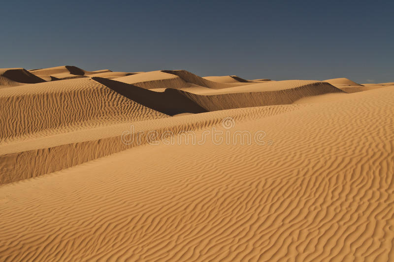 Dunes of sand, Sahara, desert. Sand dunes in the Sahara desert, light, shadows, curves, wind and sun stock images