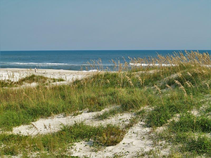 Canaveral National Seashore. Dunes and sea grass along the beach at Canaveral National Seashore in Florida stock photos