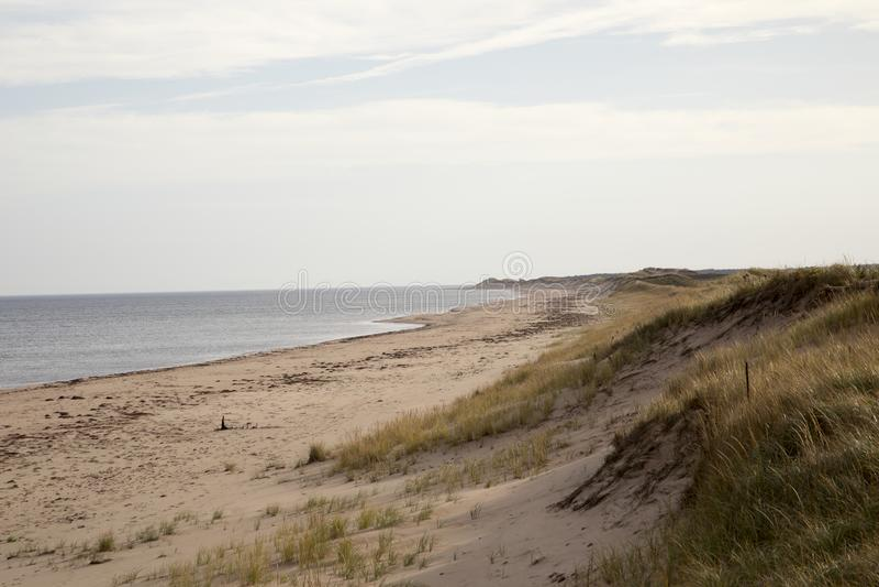 Dunes sur la côte de prince Edward Island images stock