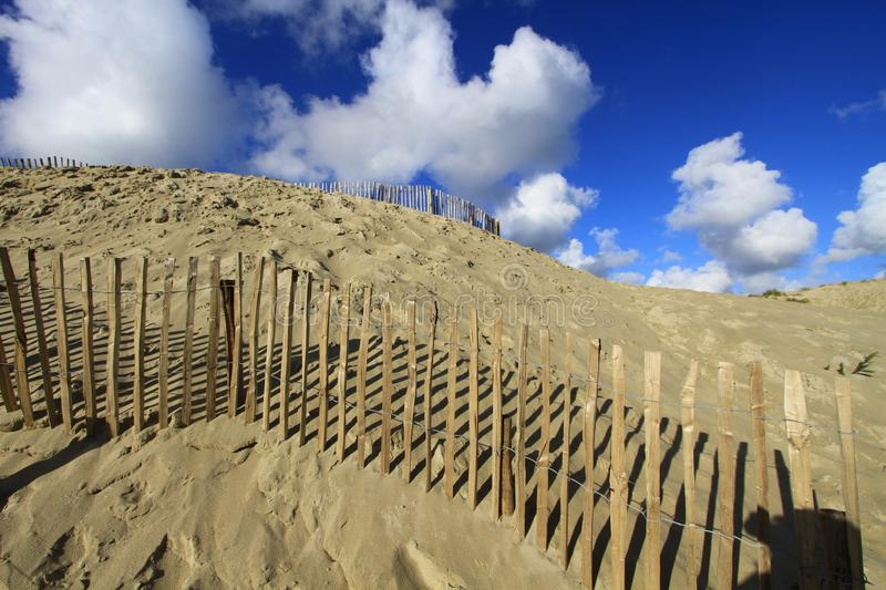 Dunes of The Touquet royalty free stock image